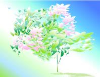 宙(そら)に活ける花〈けんこう)